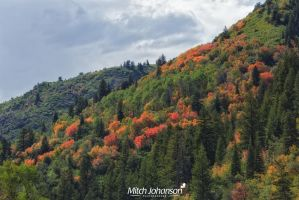 Mountain of Colors by mjohanson