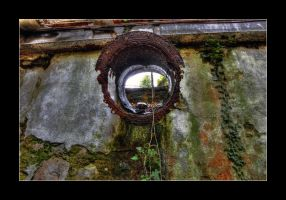The Colors of Decay 4 by 2510620