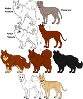 75 and 25 Percent Mixed Breeds by Leonca