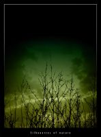 Silhouettes of nature by Kirue