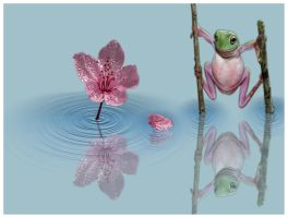 The Frog Flower by Satourne