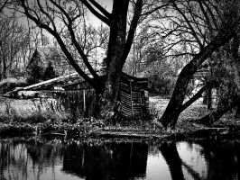 shed on the river bank B.W. by levynda