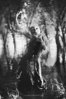 A ghost in the swamp by antoanette