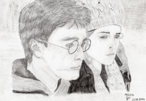 Harry Potter et Hermione Granger by AkilajoGraphic