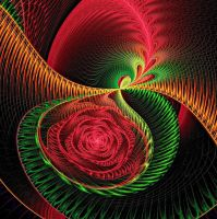 Out of chaos a rose arises by MDGallery