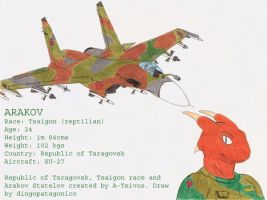 Aratok and his SU-27 by DingoPatagonico