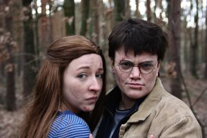 Harry and Ginny - IT ALL ENDS 7.2 by Lari--Chan