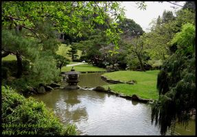 Japanese Garden 5 Pond by AndySerrano