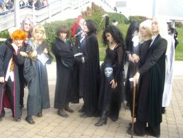 Harry Potter Group 10.09 by lunamaxwell