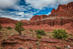 Red Rock Paradise HDR by mjohanson