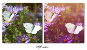 Soft Action 02 by alina0