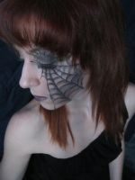 Spider 1 by Fluffybunny29stock