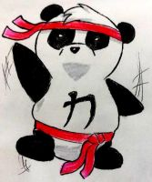 Karate Panda by EmoHoodieDude