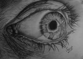 realistic eye by mahmoud-elshobaky