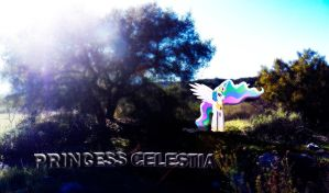 Princess Celestia Nature Wallpaper by InternationalTCK