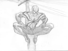Spiderman 1 by Theamat