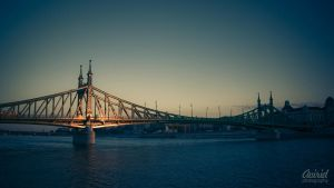 Szabadsag bridge by avirid