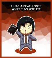 I has a Death Note by leedom111