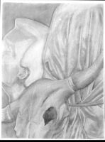 Still life in Charcoal by TheCuraga