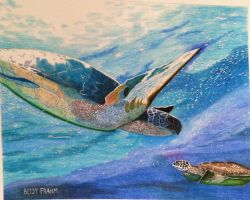 Turtle Water Ballet by BetsyMFrahm