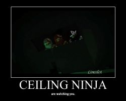 Ceiling Ninja by Lincelot1
