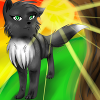 Hollypaw by Radiancy