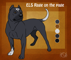 ELS Rage on the Page by EverlastingStables