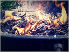 Grill by madlejane