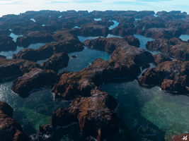 Rock Pools by Chickpea81