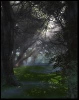 The Forest Path v.2 by Everild-Wolfden