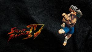 Street Fighter IV Sagat wide by ManeFunction