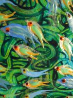 Fish - Detail 5 by Hoon-King