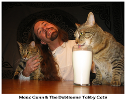The Dubliners' Tabby Cats by thebardsdotnet