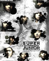 Super Junior : Bonamana by GraPHriX