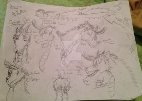 Concept Art for Dragon!America by Toonanimals