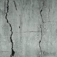 cracked by synt1kal