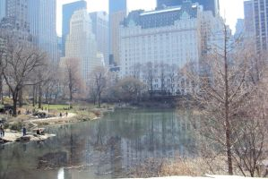 Central park by shuuni