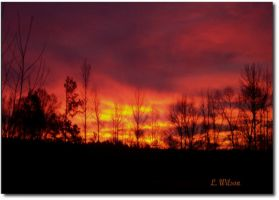 JanuarySunrise by LindaTateWilson