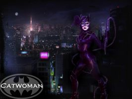Catwoman Wallpaper by quotidia