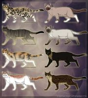 Cat Adopts- CLOSED by RussianBlues-Adopts