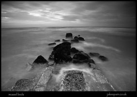 mussel beds by JakeSpain