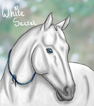 White Secret.  Gift by Naminah-C