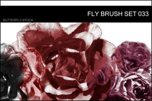 butterfly-stock_brush set 033 by butterfly-stock