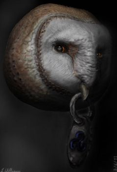 Tyto Alba ZBrush Illustration by BetterTheDevilUKnow