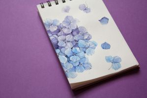Daily Painting #5 - Hydrangea by tiniugrin