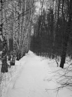 The path7 by Lukotus