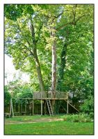 Our treehouse.L1050307, with story by harrietsfriend