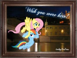 Fluttershy and Rainbow Dash In France by Paris7500