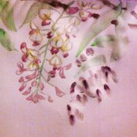 wisteria - chinese brush painting by eureka48