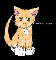 Here Kitty Kitty by ThatChickWithDaPony